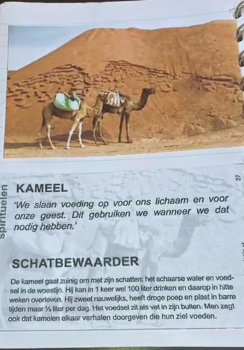 The Camel - Dalel Foundation