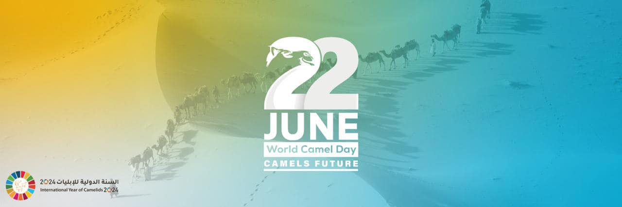 2024 the international year of camelids -Dalel Foundation.org