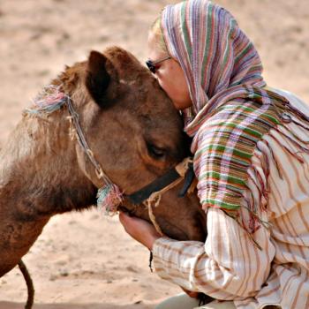 deelnemers & hun kameel, Andrea & Tunesi
